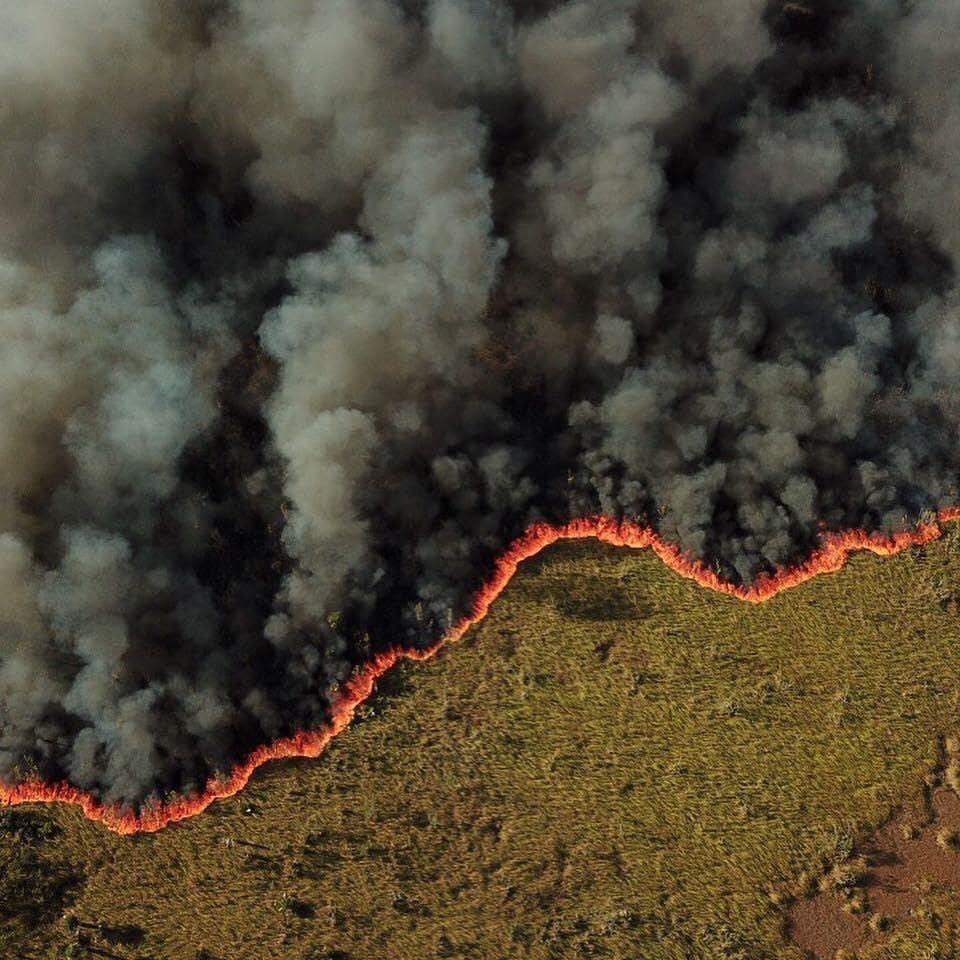 Fuego forestal azota amplias zonas de Bávaro